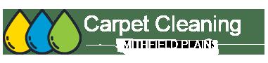 Carpet Cleaning Smithfieldplains